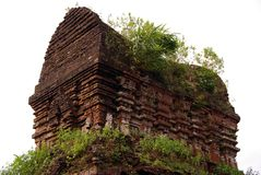 Champa architecture. My son ruins of the champa towers and temples of bricks in Vietnam Royalty Free Stock Photos