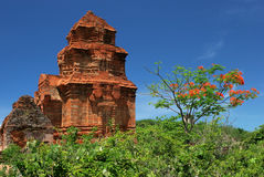 Champa towers. The champa towers new Mui Ne in Vietnam Royalty Free Stock Photos