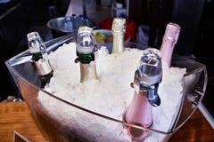 CHAMPAGNE στον πάγο στο πιάτο γυαλιού στοκ εικόνες
