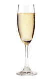 Champagne. A glass of champagne, isolated on a white background