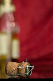 Champagne. Greater fuse and bottle of a champagne Royalty Free Stock Images
