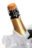 champagne Royaltyfri Bild