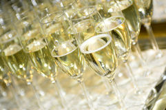Free Champagne Royalty Free Stock Photo - 3948435