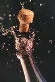 Champagne Imagem de Stock Royalty Free