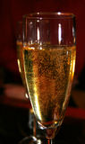 Champagne!. Two glasses of champagne Stock Image