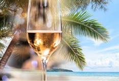 Champagne stock foto's