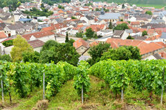 Champagne-Ardenne, France Royalty Free Stock Photography