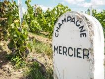 Champagne- Ardenne Francja, Sierpień, - 2017: Szampan domowy Mer Obrazy Stock