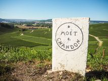 "Champagne- Ardenne Frankrike - Augusti 2017: Champagnehus Moà ""t Arkivbilder"