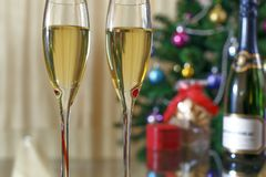Champagne, Christmas spruce and gifts royalty free stock photo