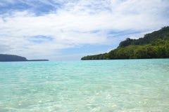 Champagne Beach Vanuatu Stock Afbeelding