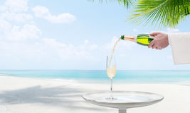 Champagne on beach. View of nice tropical beach with some palms stock photos