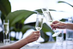 Champagne in beautiful glass. Meeting in a city restaurant or cafe. Houseplants near window, daylight.  Stock Photography