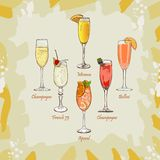 Champagne, Bellini, Mimosa, Kir Royale, French 75, Aperol Spritz cocktail illustration. Alcoholic classic bar drink hand drawn. Classics Champagne, Bellini royalty free illustration