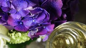 Champagne and a big bouquet. Two glasses of champagne and a big bouquet of fresh flowers, purple hydrangeas and white roses, vintage style stock footage