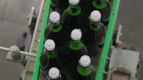 Champagne bij de fabriek stock videobeelden