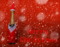 Champagne bootle in snow Royalty Free Stock Images