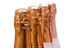 Champagne bottle Stock Images