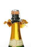 Champagne bottle Royalty Free Stock Photos