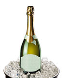 Champagne bottle in a bucket with ice royalty free stock photography