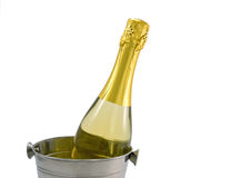 Champagne bottle in a bucket on a white Stock Photos