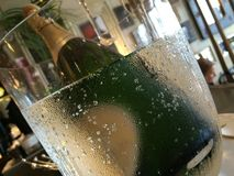 Champagne. Bottle in cooling ice bucket Stock Photography