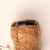Champagne bottle cork Stock Image