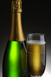 Champagne Bottle and Flute Stock Photography