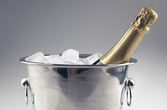 Champagne bottle in ice bucket Stock Photography