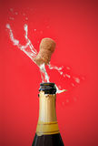 Champagne  bottle opening Stock Image
