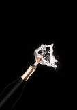 Champagne bottle and spray on black backgroun Royalty Free Stock Photo