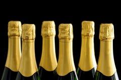 Champagne bottles on black backround Royalty Free Stock Photos