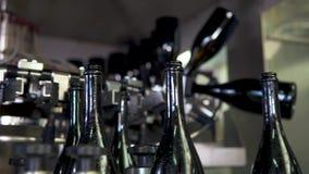 Champagne bottles on factory conveyor belt,wash bottles for bottling stock footage