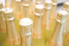 Champagne bottles Royalty Free Stock Images