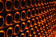 Champagne bottles in wine cellar. Stock Photos