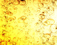 Champagne bubbles Stock Photography