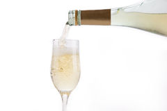 Champagne with Bubbles Stock Images