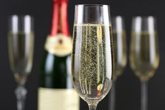 Champagne with bubbles in a glass Stock Photography