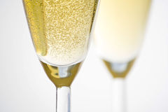 Champagne for celebrate christmas festive Stock Images