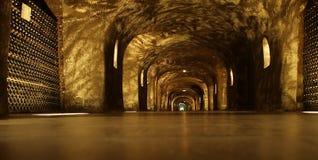 Champagne Cellar Royaltyfri Bild