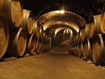 Champagne Cellar Stock Foto's