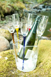Champagne chilling Stock Photography