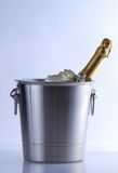 Champagne cooler Royalty Free Stock Photo