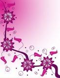 Champagne cor-de-rosa ilustração stock