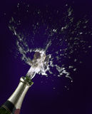 Champagne and cork Stock Images