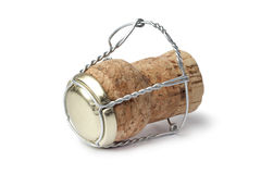 Champagne cork. Just from the bottle on white background Stock Image