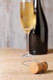 Champagne cork Stock Photos