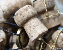 Champagne corks Stock Photo