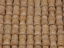 Champagne Corks Arranged natural em uma vista angular imagens de stock royalty free