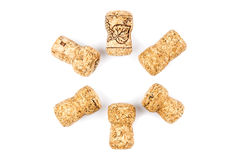 Champagne corks Stock Photography